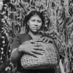A Warao artisan with a basket she has woven from bora bora (water hyacinth)